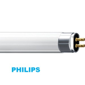 - Essential TL5 Fluorescent Lamps 3 尺21W (16mm)