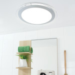 Lucci LED ceiling 燈飾