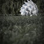 02053_Silvia_steel_in_grass