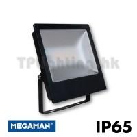FFL70400v0 megaman floodlight IP65