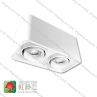 GD5812WH02 double heads white surface mount