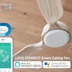 lucci connect fb