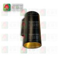 wall lamp wl-1717 danny mini-ws black gold inner gu10