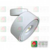 vitality-12w-dtw aluminium ceiling spot led light